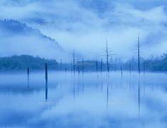 奥上高地大正池