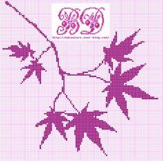 feuilles erable