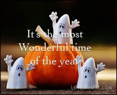 It's the most wonderful  quotes quote halloween humor happy halloween trick or treat