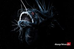 deep sea creatures | SeaWayBLOG: Creatures from the Deep Blue Jeans