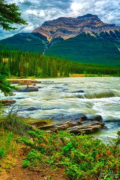 Athabasca Falls is a Waterfall in Jasper National Park.
