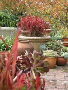 Arthur Lathouris Landscape and Garden Designer /Arthur lathouris