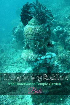 Underwater Temple Garden in Bali, where you can dive among Buddha statues that are part of a marine conservation effort to restore coral reefs