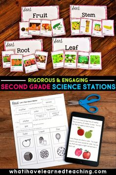 Teachers - Do you need ideas and materials to teach second grade science? These Next Generation Science Stations are perfect for your science classroom. It includes physical science stations about the properties of matter, life science stations about habitats and how plants grow, and earth science stations about wind and water changes. And there's more! It's a complete year of science content for your elementary classroom. Science Topics, Science Resources, Science Lessons, Life Science, Earth Science, Science Activities, Second Grade Science, Teaching Second Grade, Science Stations