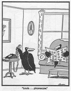 """The Far Side"" by Gary Larson. Cartoon Jokes, Funny Cartoons, Funny Jokes, Hilarious, Cartoon Fun, Funny Sarcasm, Dad Jokes, Gary Larson Comics, Gary Larson Cartoons"