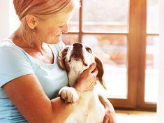 Dürfen Vermieter verbieten, Haustiere zu halten? Das Gericht hat im Präzedenzfall entschieden: Vermieter dürfen Hund und Katze nicht