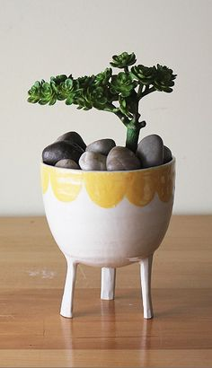 scalloped edge planter