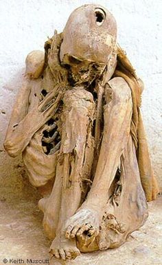 This remarkable mummy, now in the Museo Regional del Marańón, reportedly came from La Petaca. The skull has been trepanned. The patient evidently did not survive the operation, since the scalp never healed.