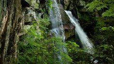 Possible Honeymoon Ideas: Attractions NC Sites – North Carolina Travel & Tourism