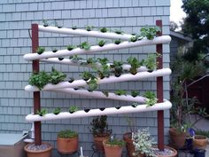 The vertical garden gives you many benefits. Well, the benefits are still there even though you have this garden at . Read Wonderful and Fresh Pipe Vertical Garden Design Vertical Vegetable Gardens, Vertical Farming, Vertical Planting, Gutter Garden, Veg Garden, Hydroponic Growing, Hydroponic Gardening, Sustainable Gardening, Urban Gardening