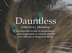 DAUNTLESS (adj) - Invulnerable to fear or intimidation never frightened or worried even by very difficult or dangerous things - Unusual Words, Weird Words, Rare Words, Unique Words, Cool Words, Unusual Names, Fancy Words, Words To Use, Pretty Words