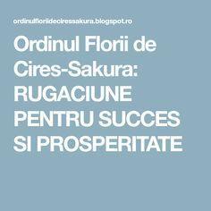 Ordinul Florii de Cires-Sakura: RUGACIUNE PENTRU SUCCES SI PROSPERITATE