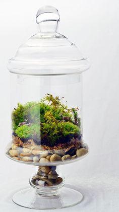 Apothecary Jar Terrarium // Moss // Deer // Home by PinkSerissa, $120.00