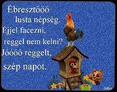 Good Day, Good Morning, Humor, Animals, Figurative, Buen Dia, Buen Dia, Animales, Hapy Day