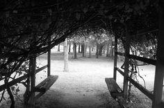 Walnut Grove Plantation - Roebuck - Spartanburg SC