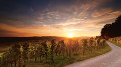 Sonnenuntergang am Ottenberg in der Nähe vom Bodensee