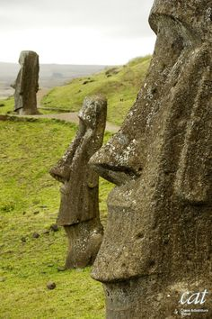 Don't mind the stony-faced locals, they are one of the main highlights of traveling to the remote Easter Island. #travel #Chile #tbt