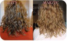 KOZIERADKA na włosy - właściwości i efekty stosowania! | Loki, Beauty Hacks, Long Hair Styles, Crochet, Funny, Hair Beauty, Wax, Beauty Tutorials, Clean Foods