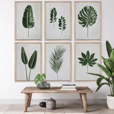 Tropical Leaves Wall Art Print Set | Collection 14