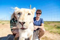 The dream of volunteering abroad in Africa with lions, cheetahs and wild cats sits atop many a travellers bucket lists. This enriching and life changing experience can leave a mark on you and is a travel style we will always recommend. Last year we travelled abroad for a full year and when we decided on what to do in our final week, we knew it had to be something special and memorable before catching our return flight home. We traded-in partying it up in Vegas to celebrate this momentous…