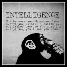 Intelligence - questioning what you know