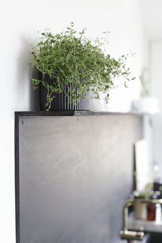After installing a dramatic kitchen system in black oak in her Drammen, Norway, home, blogger Nina Holst of Stylizimo took a hands-on, low-cost approach to