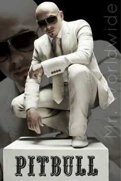 Can I meet you? Pitbull The Singer, Pitbull Rapper, Happy Birthday Pitbull, Pitbull Artist, Armando Christian Perez, Personal Achievements, Special Quotes, Songs To Sing, Soul Music