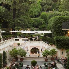 """In #Rome: """"Le Jardin de Russie"""" ,one of the most beautiful gardens i have seen with orange trees and large palm trees felt like a truly exotic place in the middle of winter too.