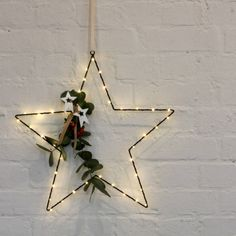 Wire Star Light