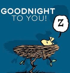 Good Night To You, Good Night Wishes, Good Night Sweet Dreams, Good Morning Good Night, Charlie Brown Y Snoopy, Snoopy Love, Snoopy And Woodstock, Quote Night, Good Night Quotes