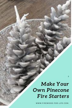 Learn how to make your own homemade pinecone fire starters using pinecones and wax. They're a great gift idea plus they make lighting your campfire, fireplace or wood stove easy! Homemade Fire Starters, Pinecone Fire Starters, Camping Lights, Diy Camping, Camping Games, Camping Ideas, How To Make Fire, How To Make Light, Easy Diy Crafts