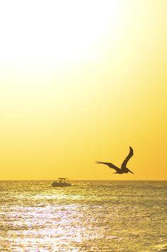 Aruba Sunset #AIOutlet