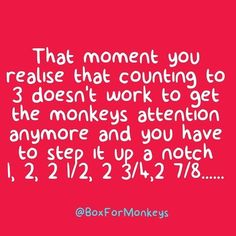 Anyone else do this??  #reallife #parentlife #keepingitreal Activity Box, Monkeys, Kids And Parenting, Cool Kids, Real Life, In This Moment, Activities, Education, Fun