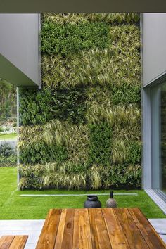 vertical garden wall.