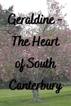 Geraldine - The Heart of South Canterbury Not only is Geraldine the Heart of South Canterbury, it is also the Gateway to the Southern Lakes. While located inland on State Highway 58, it is only a short drive from the main State Highway 1. #ontheroadkiwis #geraldine #travel #newzealand #nztoday #nzmustdo #photography #newzealandlife #lovelocal #southisland Stuff To Do, Things To Do, Highway 1, Guinness Book, Private Garden, South Island, Canterbury, Lakes, New Zealand