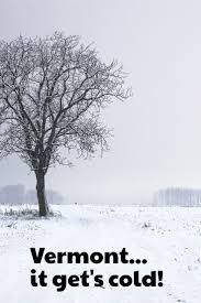 Image result for single tree in the snow rural america