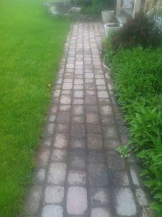 weedless walkway