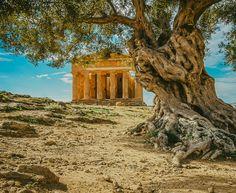 "mostlyitaly: "" Agrigento - Valle dei templi (Sicily, Italy) by Alfio Finocchiaro """