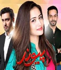 Paiwand last Ep 27 on Ary Digital 14 nov 2015