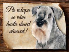 Cedulka Knírač - Po vstupu ... Dogs, Animals, Animales, Animaux, Doggies, Animal, Pet Dogs, Animais, Dog