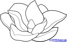 magnolia flowers drawings | how to draw a magnolia step 6