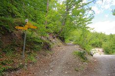 Randonnée à Haut de Cry par l'Airette, Chalet d'Einzon, Einzon  Le sommet de Haut de Cry, est un sommet peu parcouru, je pense que cela vient du fait que la partie finale n'est pas répertiorée sur les cartes. Le CAS a un article sur cette randonnée et on m'avait parlé de ce jardin alpin au sommet. Ce qui m'avait poussé à le visiter ...  https://www.transpiree.com/randonnee/lairette_haut_de_cry/