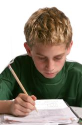 Articles: Sixth Grade Social Studies: What to Expect