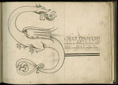 The first calligraphy book was written in 1592 by John Scottowe (Wing MS ZW 545 .S431). The book presents a calligraphic alphabet, each letter forming an elaborately decorated initial beginning a moral adage or other text, some in English and some in Latin, each in a different script.: