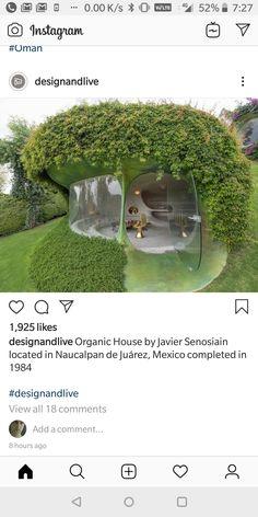 Pavillion Design, Mexico, Organic, Instagram