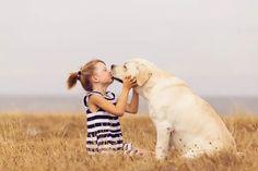 Der Labrador als Therapiehund? Echt geeignet? Ja. Alle Infos und Details in unserem heutigen Blogpost Fox Terriers, Rat Terrier, Beagle, Cute Family, Family Dogs, Basset Hound, Chihuahua, Dog Best Friend, Pets