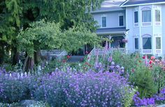 Sea Cliff Gardens Bed & Breakfast in Port Angeles, Washington | B&B Rental not for sale, one of ten top rated garden B + B's. Inspirational--in and out.