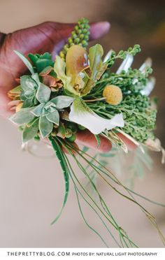 Stunning combination of Succulents, Orchards and Greenery | Chelsea Village | Photography by Natural Light Photography