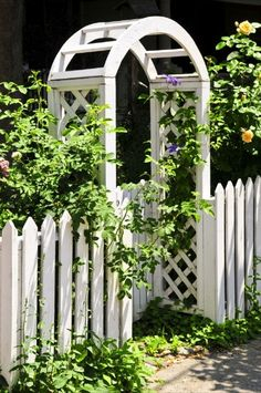 Repinned: Plant Vines - 150 Remarkable Projects and Ideas to Improve Your Home's Curb Appeal