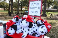 dalmation puppies to adopt, firetruck birthday party